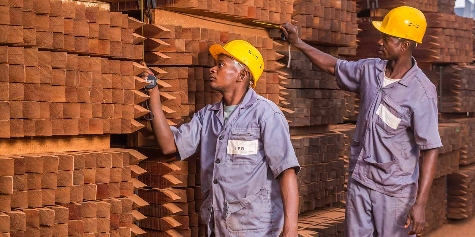 The ten  'Fair and Precious' commitments of certified wood Made in Africa