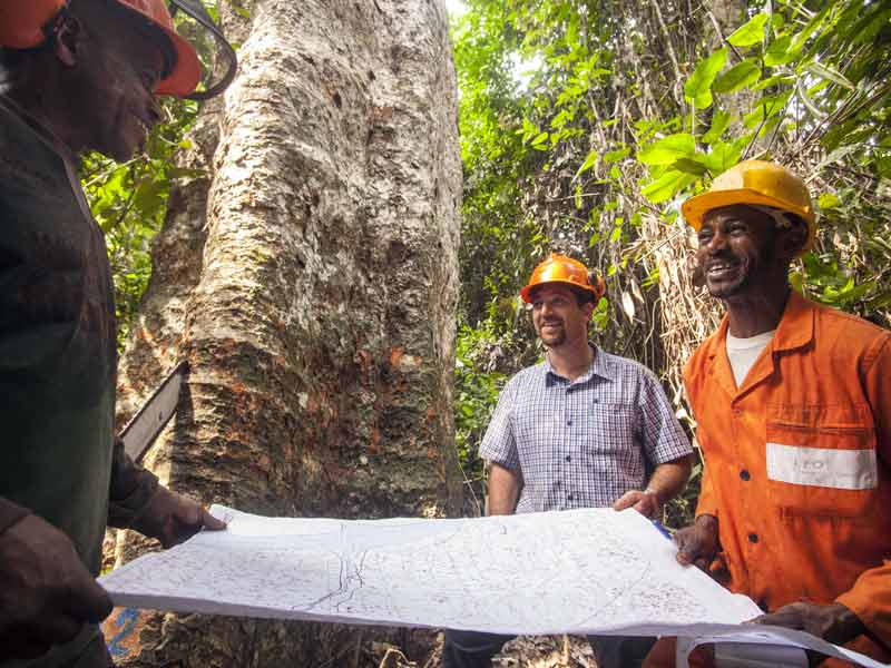 Sustainable Forest Management, the 'best land-use' for Congo Basin's 'Natural Capital'