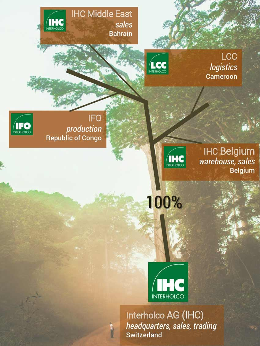Our legal structure Interholco